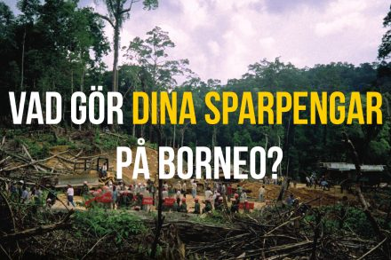 infor-borneoslapp-7-mars-2